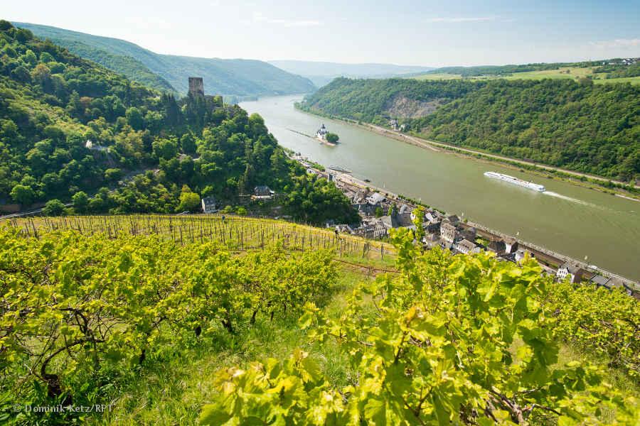 Die schönste Rheinsteig Etappe